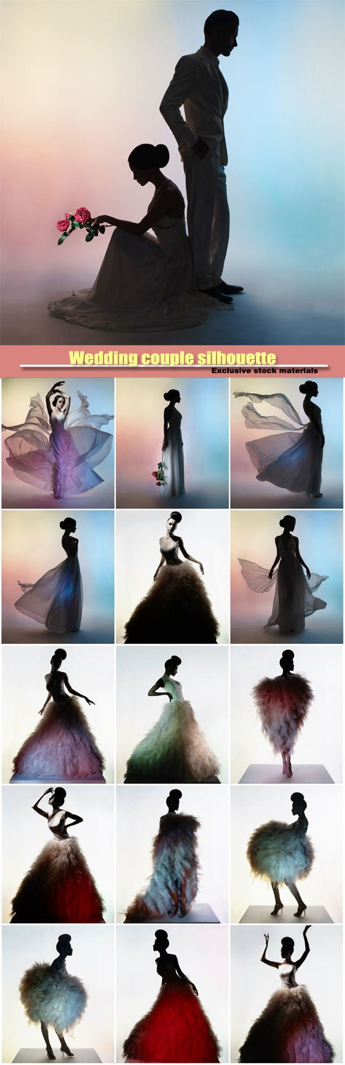 Wedding couple silhouette, groom and bride, beautiful elegant woman in luxury evening dress