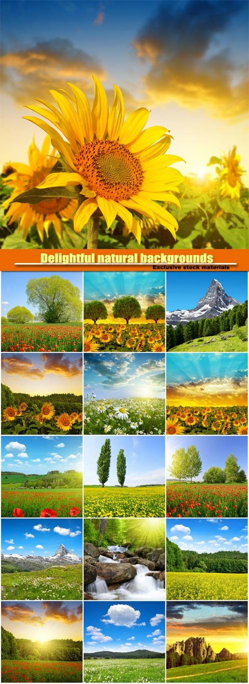 Delightful natural backgrounds, fields of flowers, meadows, mountains, waterfalls