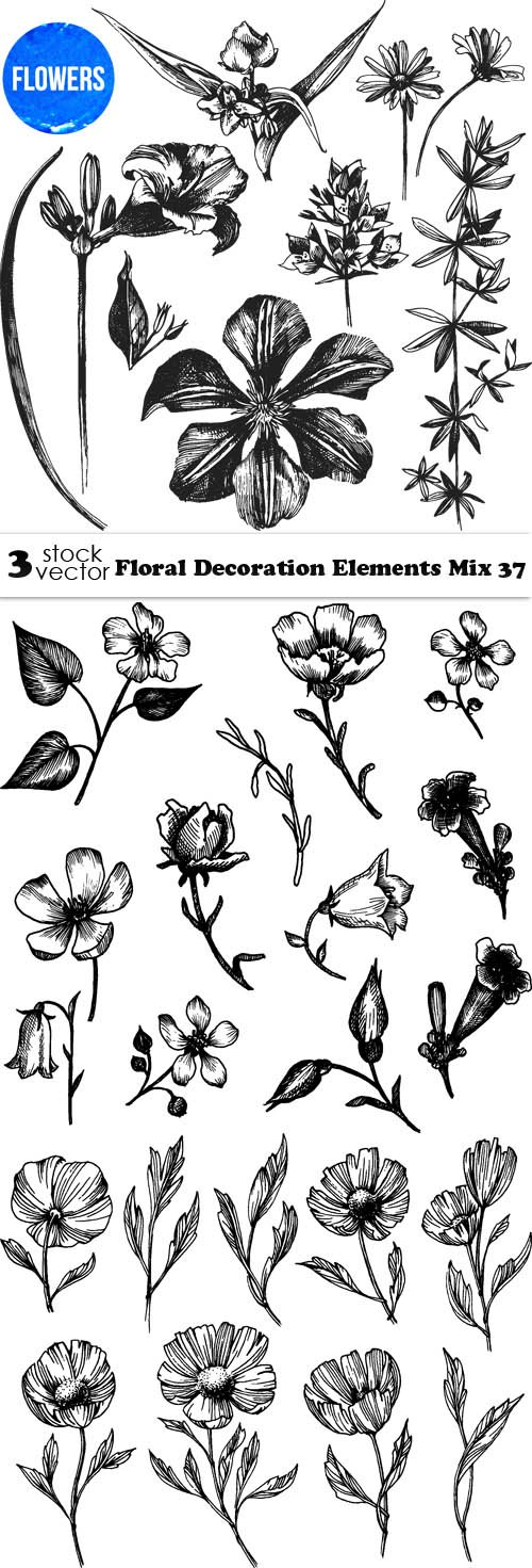 Vectors - Floral Decoration Elements Mix 37