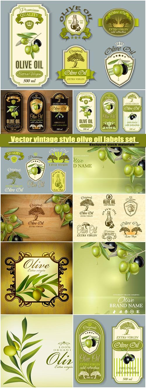 Vector vintage style oilve oil labels set
