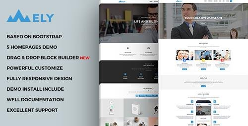 ThemeForest - Mely - Responsive Business Drupal Theme (Update: 23 December 16) - 13576410