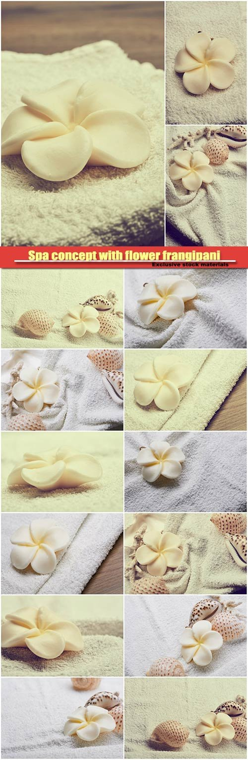 Spa concept with flower frangipani