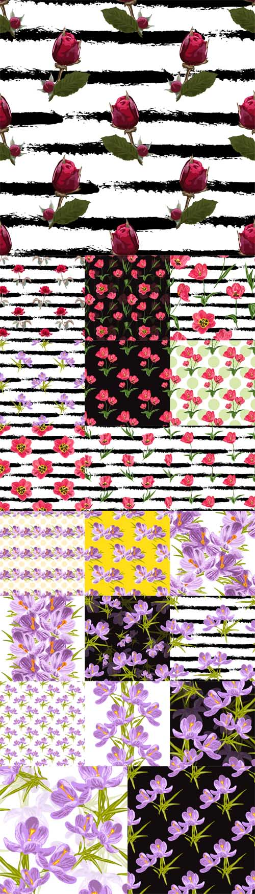 Vector Seamless Patterns Floral