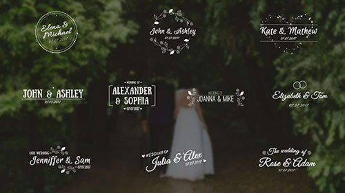 Wedding Titles 28531 - After Effects Templates