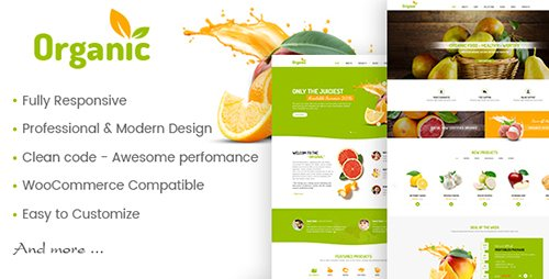 ThemeForest - AmyOrganic v1.0.2 - Organic and Healthy Theme for WordPress - 19361212