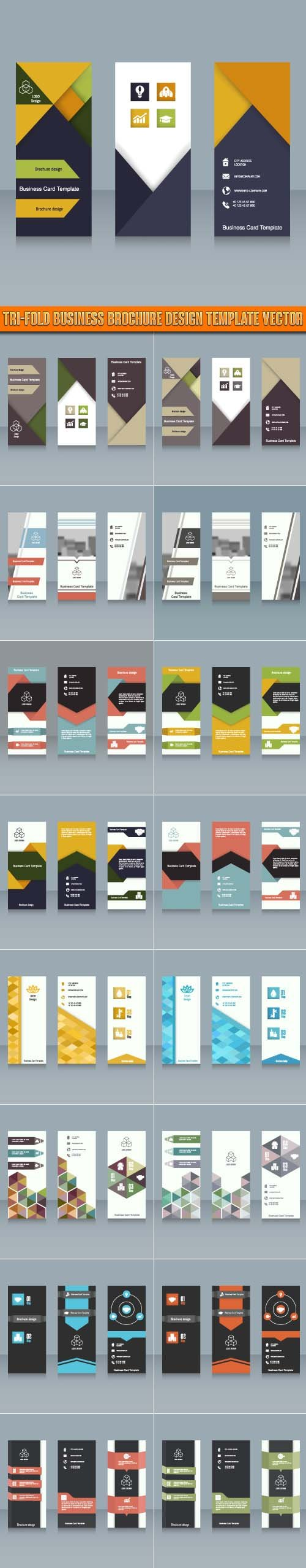 Tri-fold Business brochure design template vector