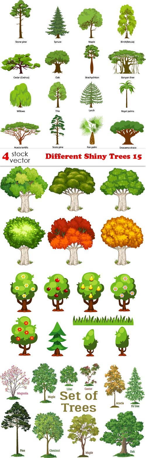 Vectors - Different Shiny Trees 15