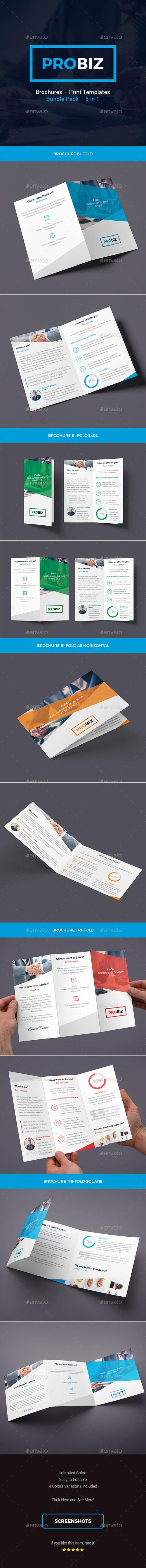 ProBiz – Brochures Print Templates Bundle – 5 in 1 19733686