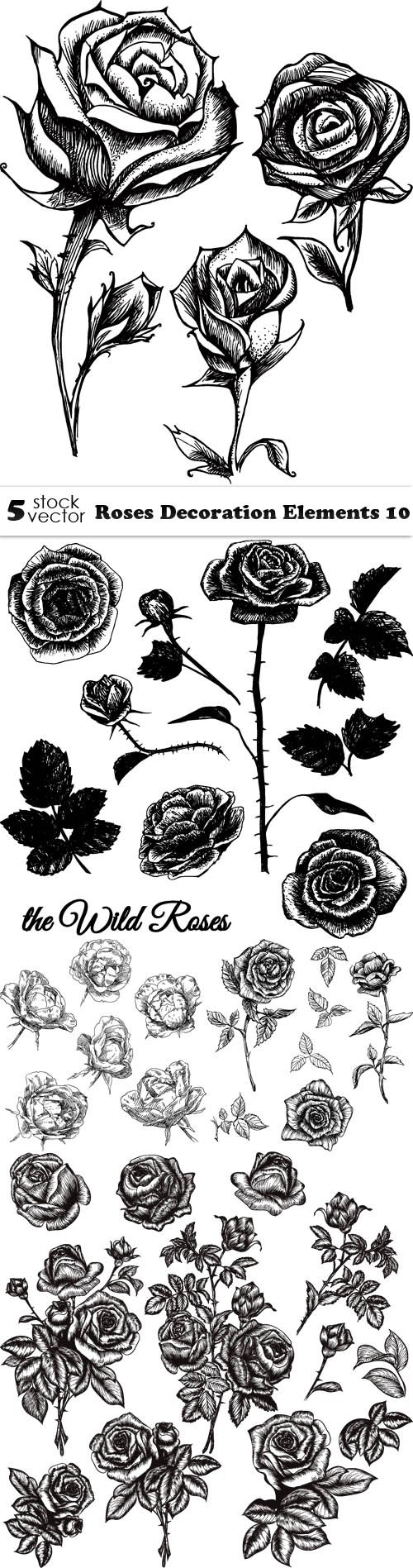 Vectors - Roses Decoration Elements 10