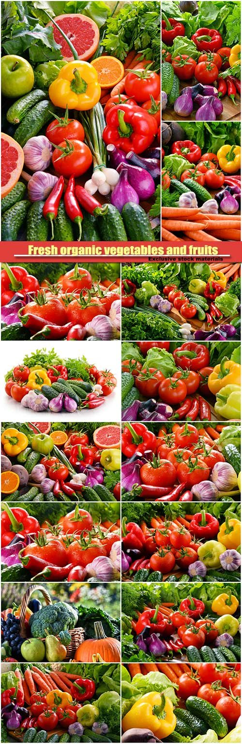 Composition with fresh organic vegetables and fruits