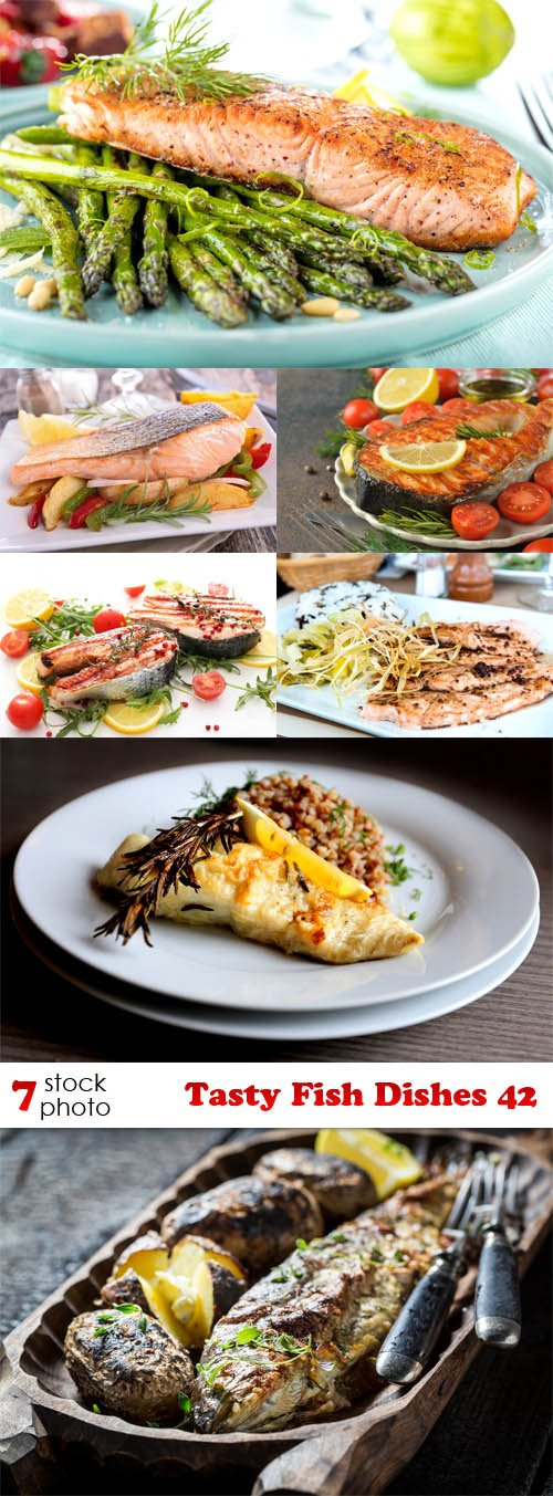 Photos - Tasty Fish Dishes 42
