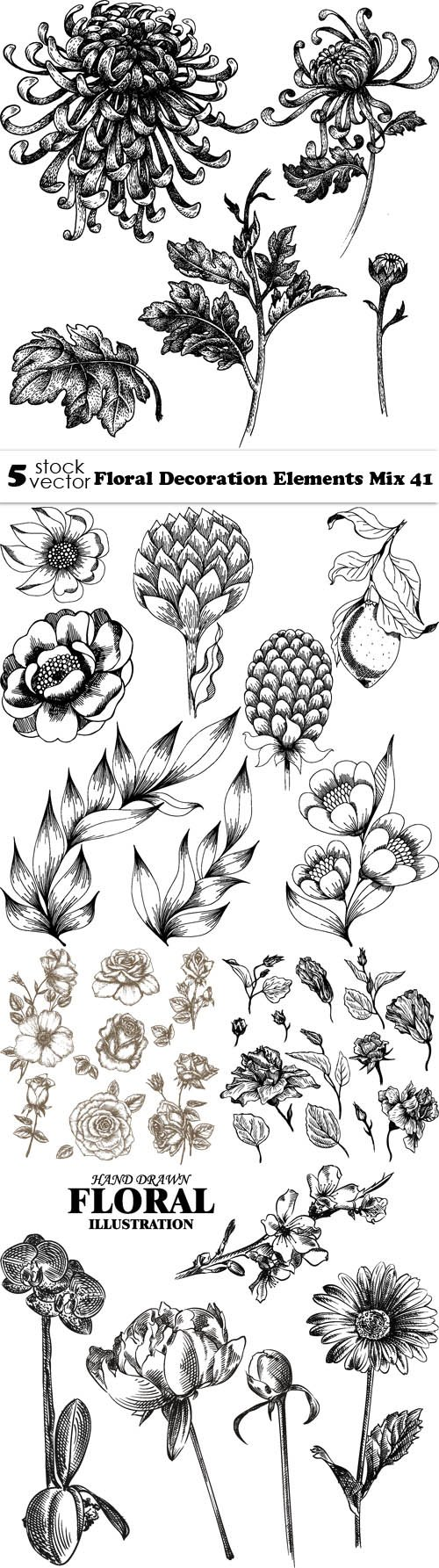 Vectors - Floral Decoration Elements Mix 41