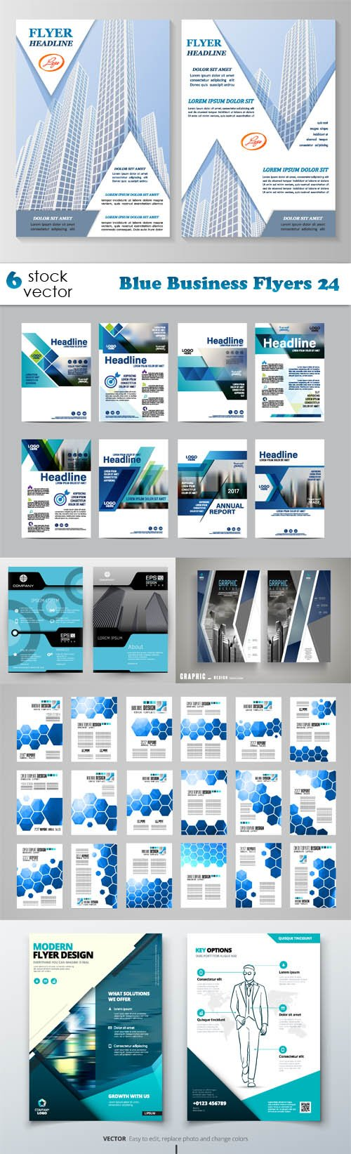 Vectors - Blue Business Flyers 24