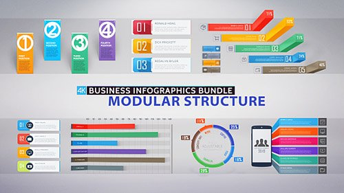 Business Infographics Bundle - Project for After Effects (Videohive)