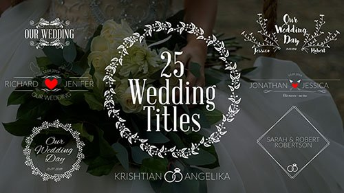 Wedding Titles 19761639 - Project for After Effects (Videohive)