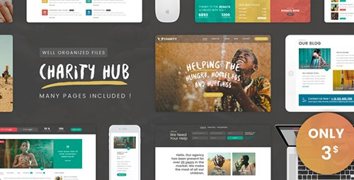 ThemeForest - Charity Foundation v1.0 - Charity Hub PSD Template - 19640689
