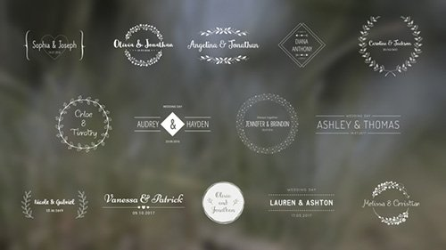 Wedding Titles 18849528 - Project for After Effects (Videohive)