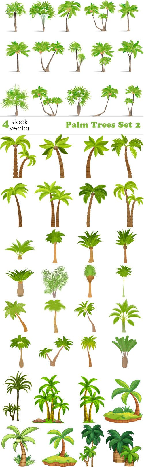 Vectors - Palm Trees Set 2