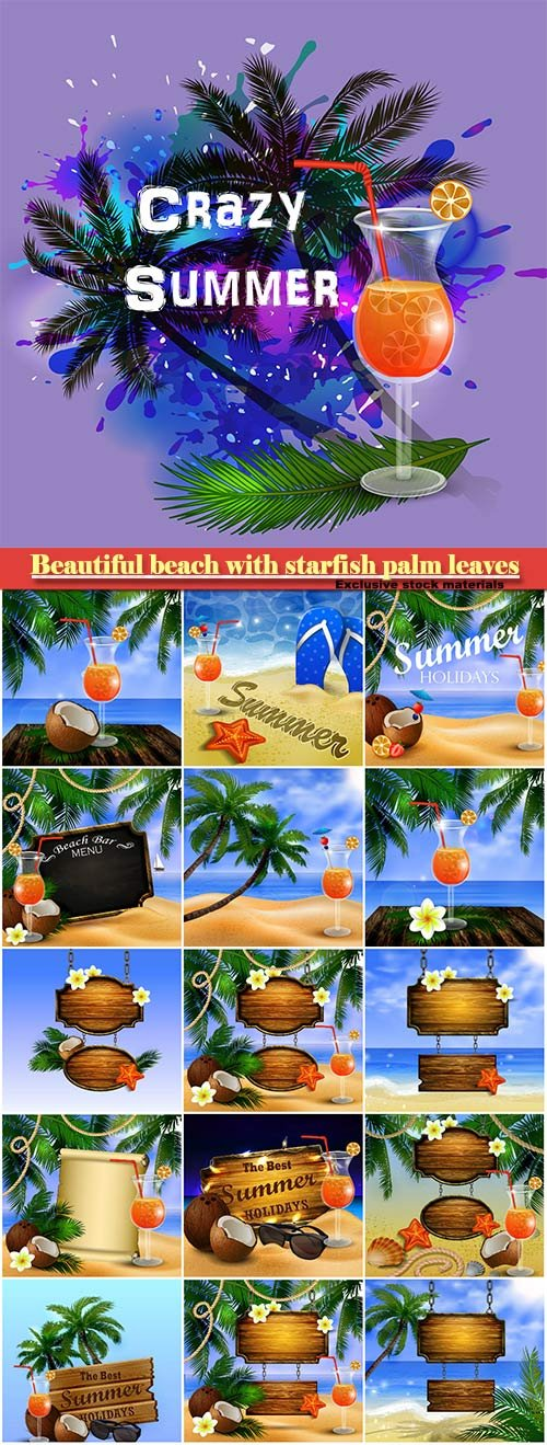 Beautiful beach with starfish palm leaves rope and wooden boards on chain and glass of beverage vector illustration