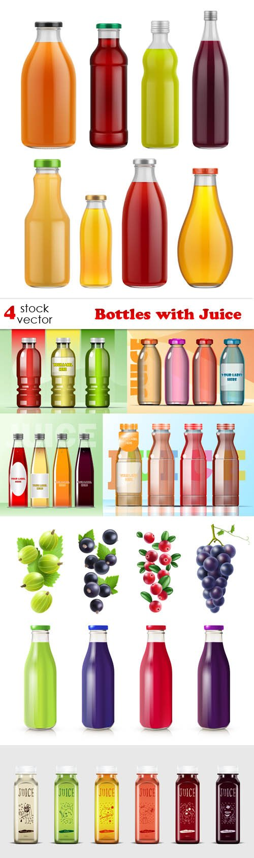 Vectors - Bottles with Juice