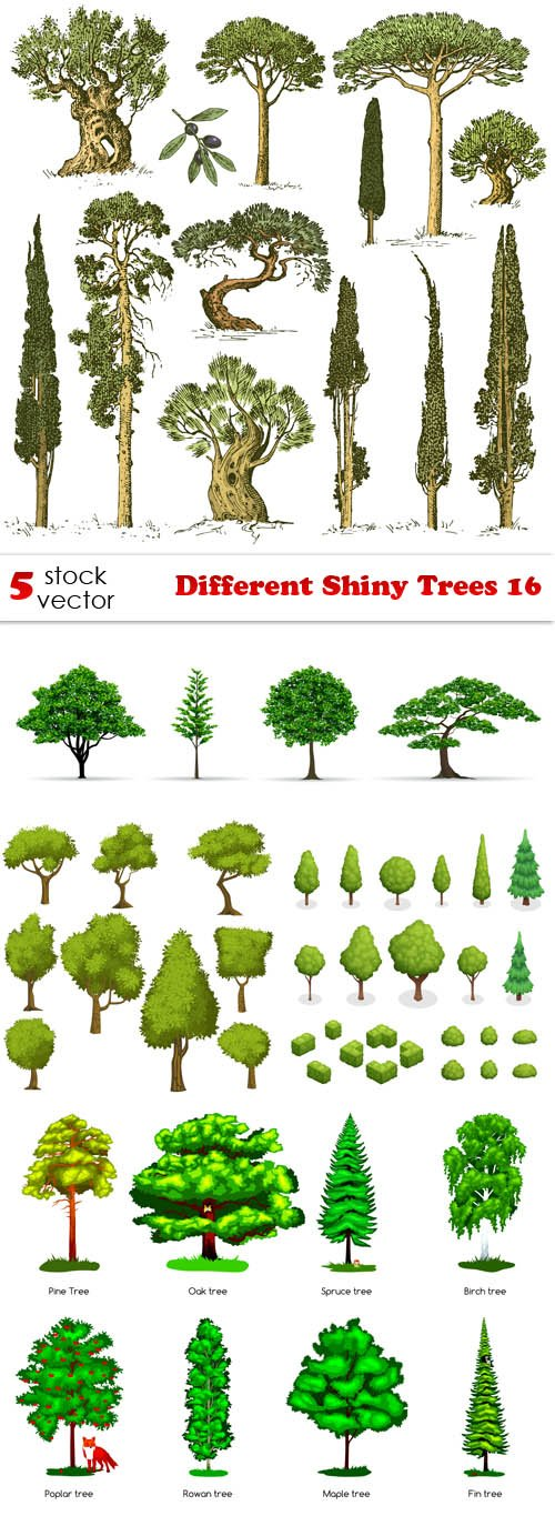 Vectors - Different Shiny Trees 16