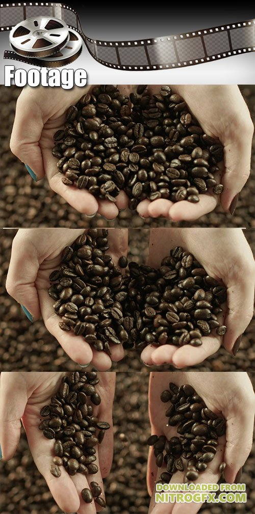 Video footage Aromatic coffee beans