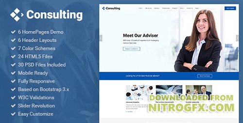 ThemeForest - Consulting v1.0 - Business, Finance, Broker, Advisor & Accounting HTML5 Template - 20365237