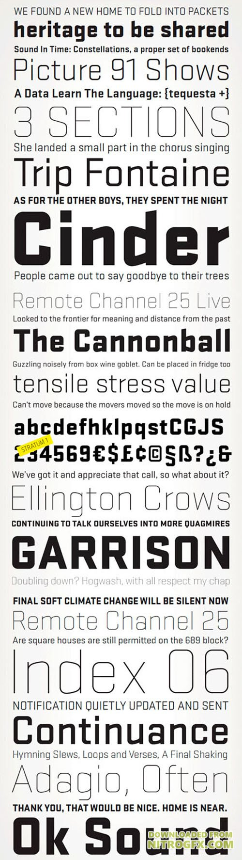 Stratum V1 & V2 Fonts Family (12 Weights)