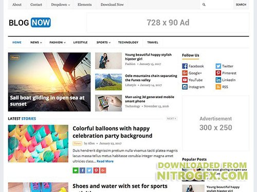 BlogNow v1.3 - WordPress Blog Theme - CM 1208580
