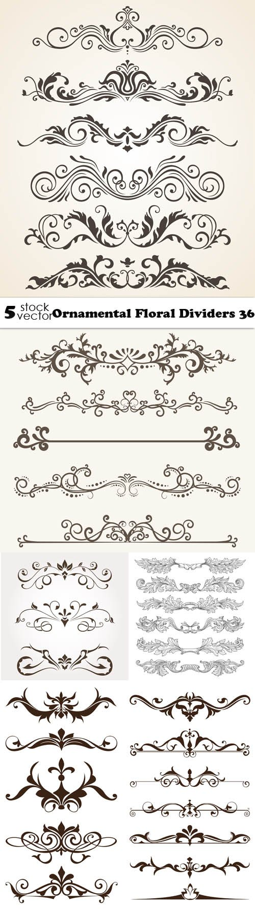 Vectors - Ornamental Floral Dividers 36