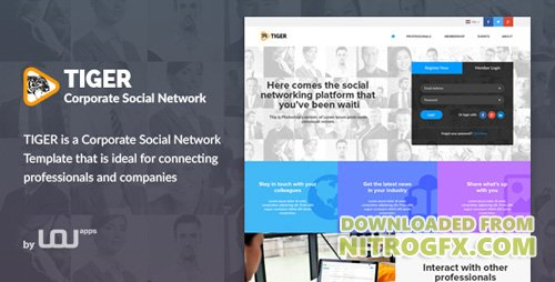 ThemeForest - Tiger - Corporate Social Network Template (Update: 28 June 16) - 16078949