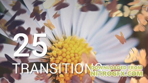 Butterflies Transitions 12016750 - Project for After Effects (Videohive)