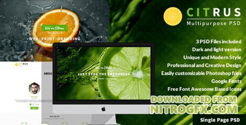 ThemeForest - Citrus v1.0 - One Page PSD Template - 7219144
