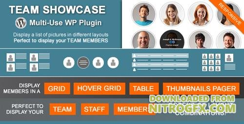 CodeCanyon - Team Showcase v1.8.6 - Wordpress Plugin - 4936368