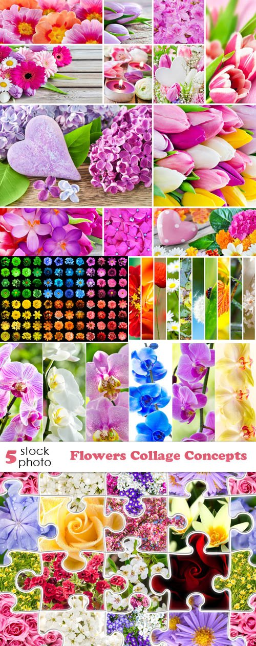 Photos - Flowers Collage Concepts