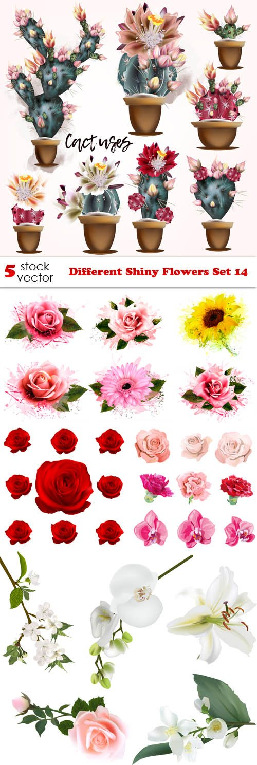 Vectors - Different Shiny Flowers Set 14