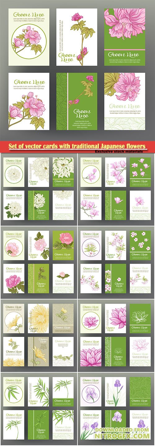 Set of vector cards with traditional Japanese flowers