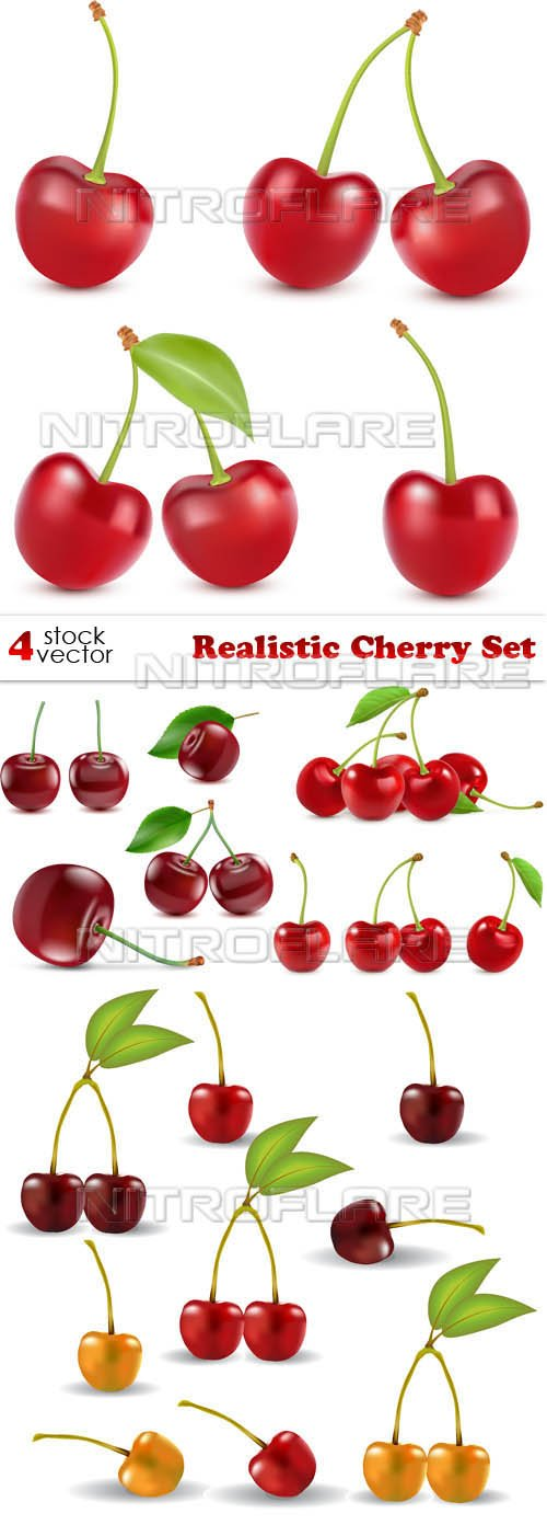 Vectors - Realistic Cherry Set