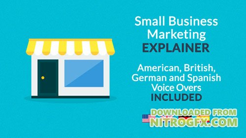 Small Business Marketing Explainer - Project for After Effects (Videohive)
