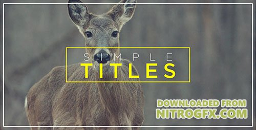 Minimal Transitions & Titles - Project for After Effects (Videohive)