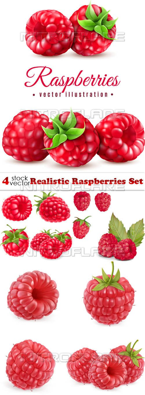 Vectors - Realistic Raspberries Set