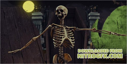 Halloween Party 13127196 - Project for After Effects (Videohive)
