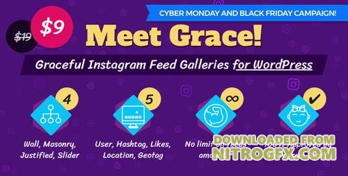 CodeCanyon - Instagram Feed Gallery v1.0.6 - Grace for WordPress - 20429911