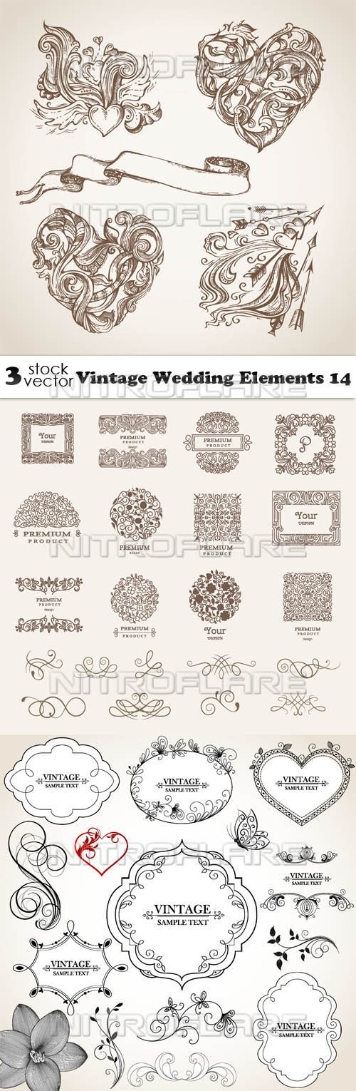 Vectors - Vintage Wedding Elements 14