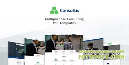ThemeForest - Consultis v1.0 - Multipurpose Consulting PSD Templates - 21015425