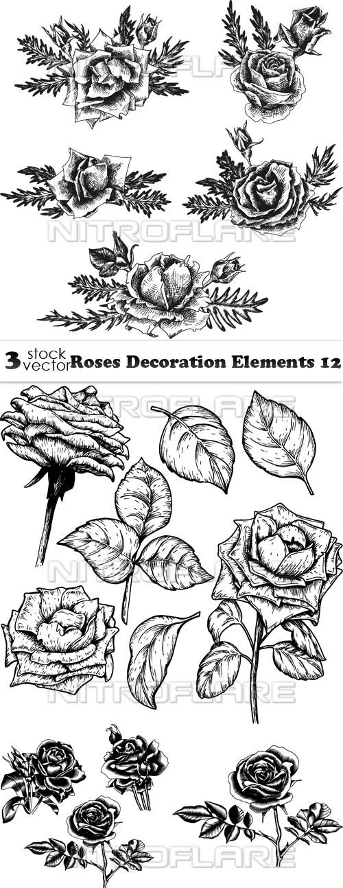 Vectors - Roses Decoration Elements 12
