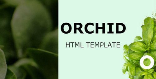 ThemeForest - Orchid v1.0 - HTML Template - 20794493