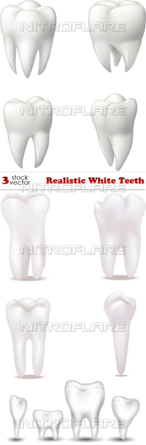 Vectors - Realistic White Teeth