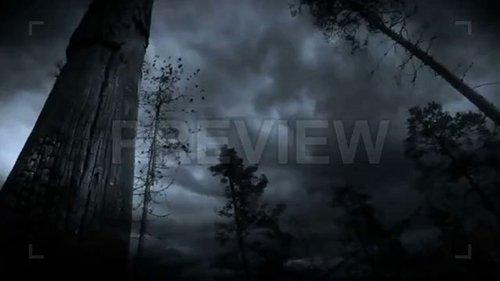 MA - Lightning Storm 64397