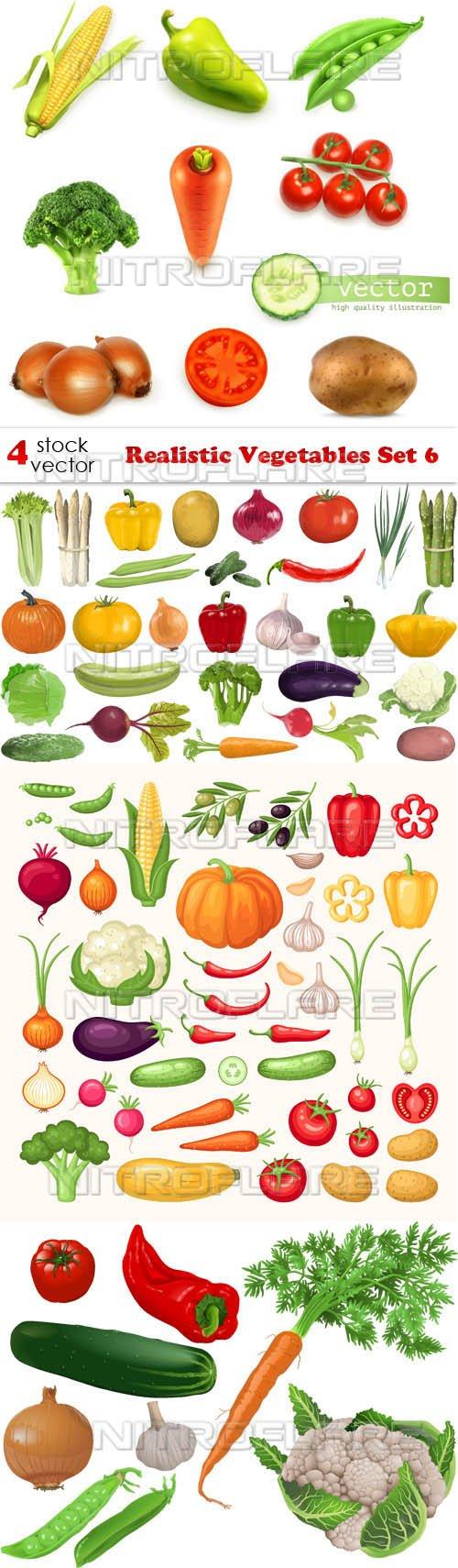Vectors - Realistic Vegetables Set 6